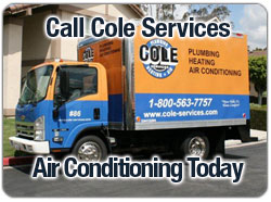 Call Cole Services Today